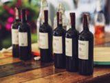 7 af de bedste vine for begyndere