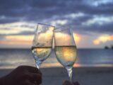 Forførende fakta om hvidvin