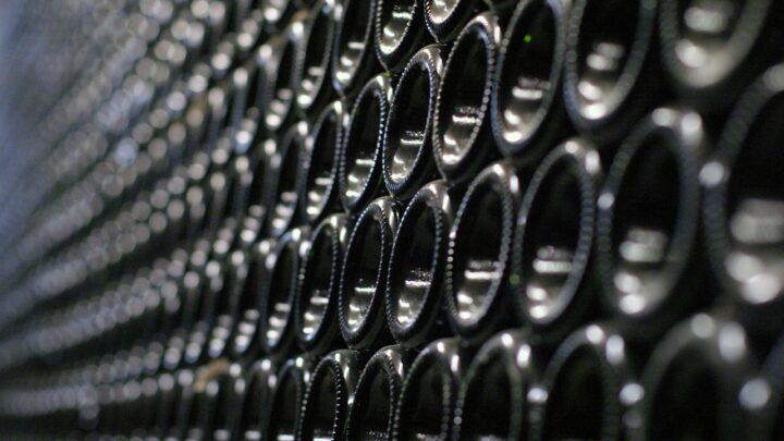 Hvordan opbevarer du din vin?