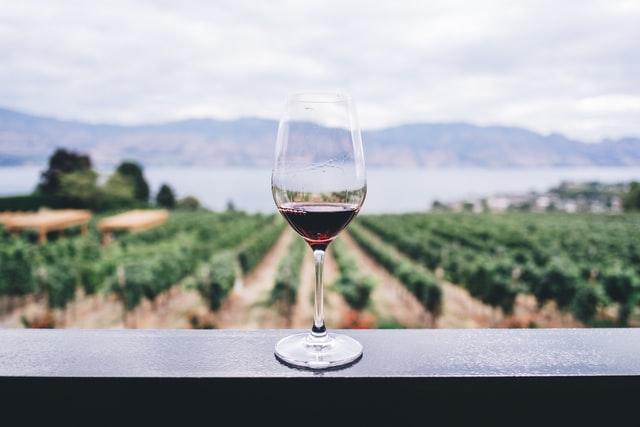 Billig vin til billige måltidskasser